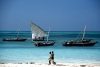 The Dhows of Zanzibar