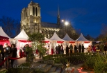 Christmas markets set around the Viviani gardens with Notre Dame at the background