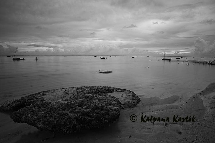 Seaweed farming along the coast of Kutuh Village
