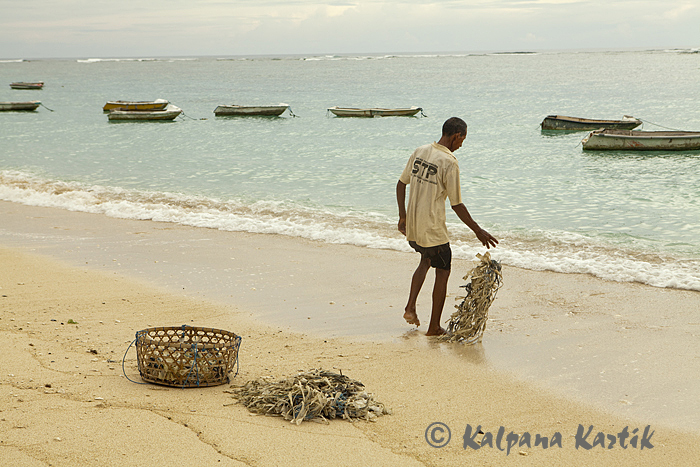 Preparing the ropes for the seaweed