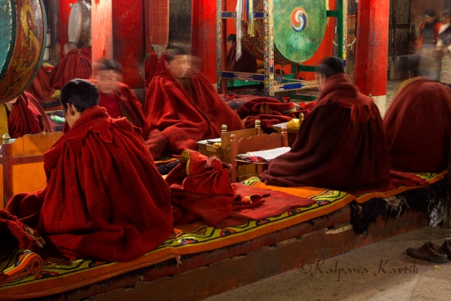 Monks at their daily prayer in the great assembly hall