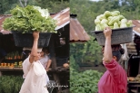 Vegetables sellers