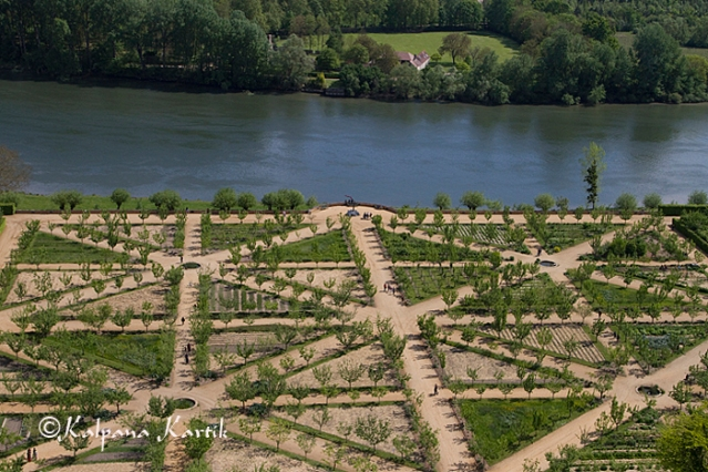 The lovely organic orchard and vegetable patch of La Roche Guyon