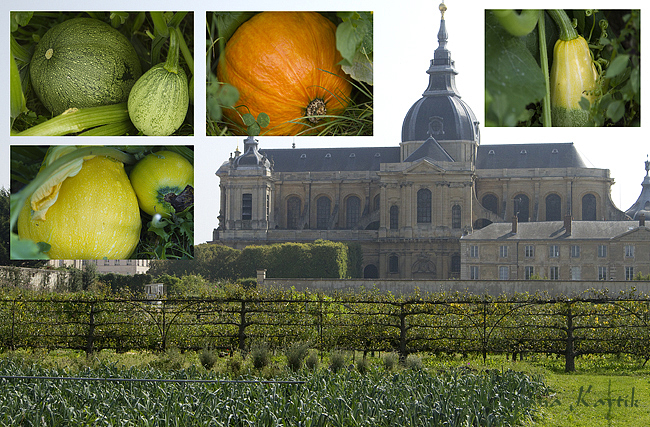 The King's vegetable garden in Versailles and the Cathedral of Saint Louis in background