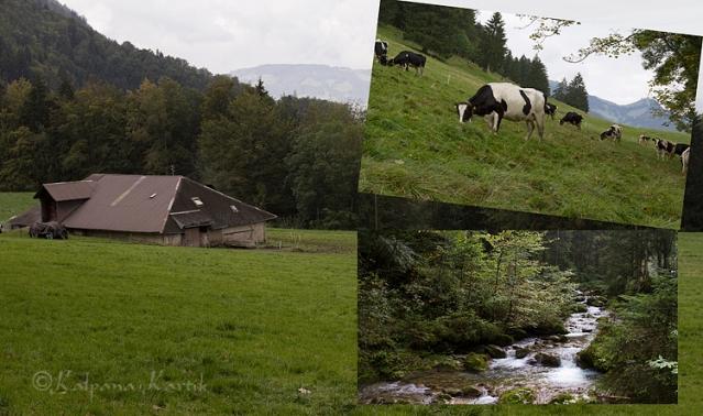 Piller family chalet in in the mountainous region of La Monse La Gruyère
