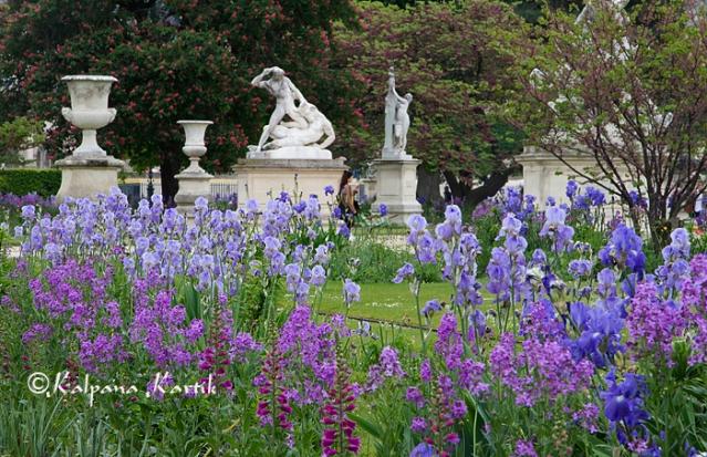 The garden of Tuileries