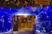 The aquarium entrance into Rainforest Cafe
