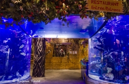 The aquarium entrance into Rainforest Cafe