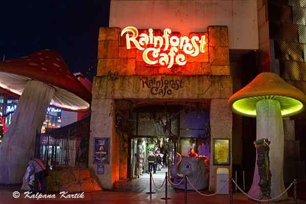 Rainforest Cafe at Disney Village Marne La Vallee France