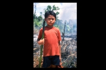A Dayak boy participating in the slash and burn , traditional way in clearing the land for new crops